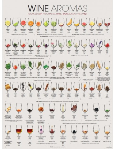 WINE AROMAS - Folded